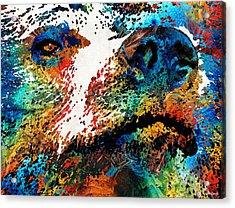 Colorful Bear Art - Bear Stare - By Sharon Cummings Acrylic Print