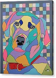 Colorful Bear Acrylic Print