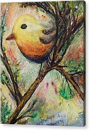 Colorful Bird Acrylic Print by Anais DelaVega