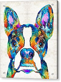 Colorful Boston Terrier Dog Pop Art - Sharon Cummings Acrylic Print