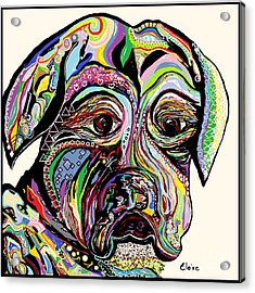 Colorful Boxer Acrylic Print by Eloise Schneider