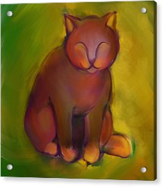 Colorful Cat 2 Acrylic Print by Anna Gora