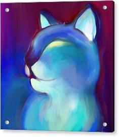 Colorful Cat 3 Acrylic Print by Anna Gora