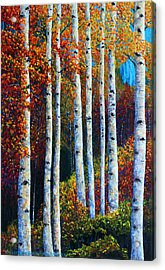 Colorful Colordo Aspens Acrylic Print