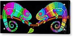 Colorful Companions Acrylic Print by Nick Gustafson