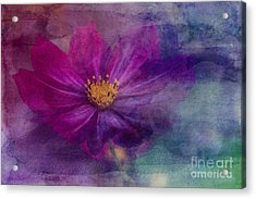 Colorful Cosmos Acrylic Print