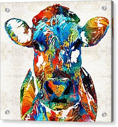 Colorful Cow Art - Mootown - By Sharon Cummings Acrylic Print by Sharon Cummings