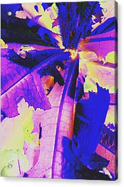 Acrylic Print featuring the photograph Colorful Disguise  by Diane Miller