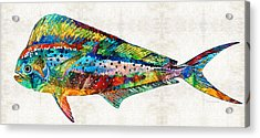 Colorful Dolphin Fish By Sharon Cummings Acrylic Print by Sharon Cummings