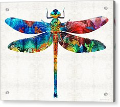 Colorful Dragonfly Art By Sharon Cummings Acrylic Print by Sharon Cummings
