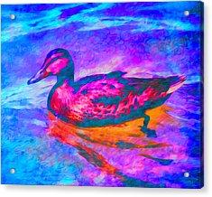 Colorful Duck Art By Priya Ghose Acrylic Print