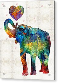 Colorful Elephant Art - Elovephant - By Sharon Cummings Acrylic Print by Sharon Cummings