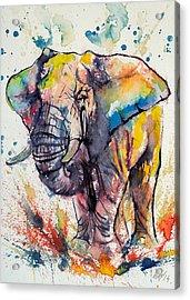 Colorful Elephant Acrylic Print