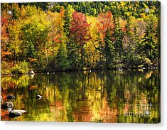 Colorful Foliage Reflection In A Tranquil Lake Acrylic Print
