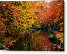 Acrylic Print featuring the photograph Colorful Forest by Boon Mee