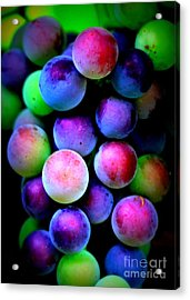 Colorful Grapes - Digital Art Acrylic Print by Carol Groenen