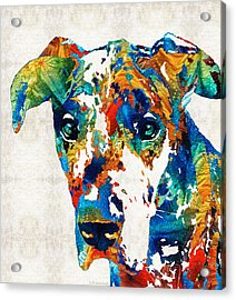 Colorful Great Dane Art Dog By Sharon Cummings Acrylic Print by Sharon Cummings