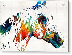 Colorful Horse Art - Wild Paint - By Sharon Cummings Acrylic Print by Sharon Cummings