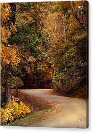 Colorful Journey - Autumn Scene Acrylic Print by Jai Johnson
