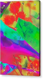 Colorful Acrylic Print by Kathleen Struckle