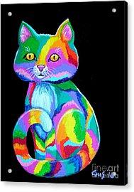 Colorful Kitten Acrylic Print by Nick Gustafson