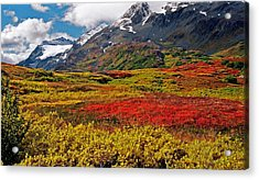 Colorful Land - Alaska Acrylic Print by Juergen Weiss