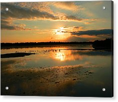 Acrylic Print featuring the photograph Colorful Light by Rosalie Scanlon