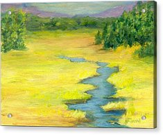 Colorful Original Landscape Painting Mountain Meadow Acrylic Print