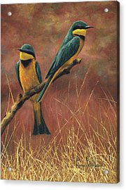 Colorful Pair Acrylic Print
