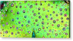Acrylic Print featuring the painting Colorful Peacock by Karen Mattson