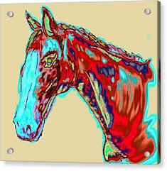 Colorful Race Horse Acrylic Print by Mark Moore