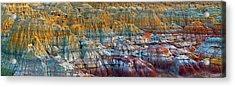 Colorful Rocks Acrylic Print by Hua Zhu
