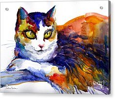 Colorful Watercolor Cat On A Tree Painting Acrylic Print