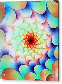Colorful Web Acrylic Print by Anastasiya Malakhova