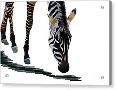 Acrylic Print featuring the digital art Colorful Zebra 2 by Teresa Zieba