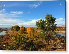 Colors Along The Colorado Acrylic Print by Bob Hislop