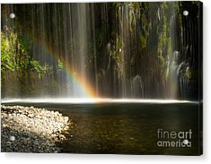 Colors Acrylic Print by Andy Wu
