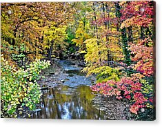 Colors Galore Acrylic Print by Frozen in Time Fine Art Photography