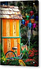 Colors Galore Acrylic Print by Tricia Marchlik
