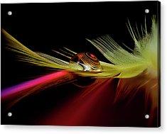 Colors In The Drop Acrylic Print by Aida Ianeva