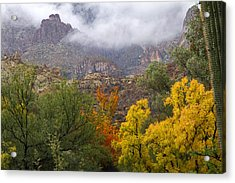 Colors In The Mist Acrylic Print