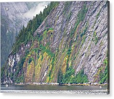 Colors Of Alaska - Misty Fjords Acrylic Print