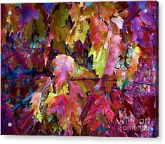 Colors Of Fall Acrylic Print by Janice Westerberg