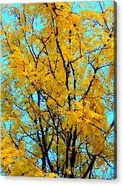 Colors Of Fall - Smatter Acrylic Print