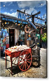 Colors Of Key West 3 Acrylic Print by Mel Steinhauer