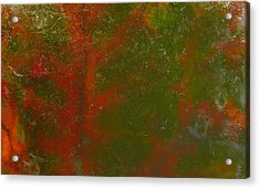 Colors Of Nature 12 Acrylic Print