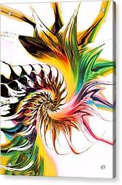 Colors Of Passion Acrylic Print by Anastasiya Malakhova