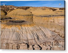 Colors Of The Badlands Acrylic Print by Vivian Christopher