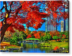 Colors Of The City Acrylic Print by Midori Chan