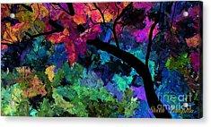Colors Of The Dream Acrylic Print